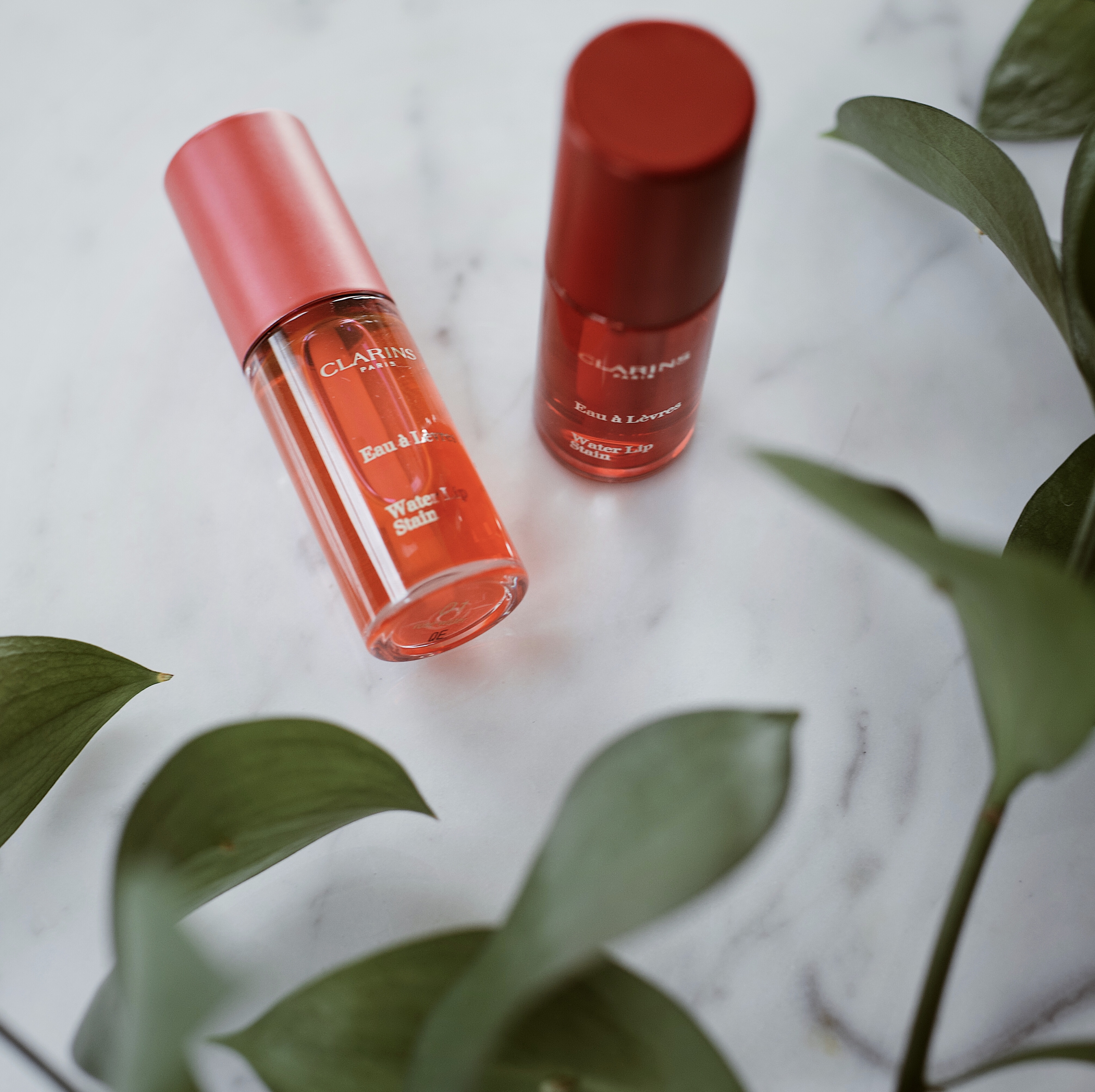 A Review and Challenge | Clarins Lippies